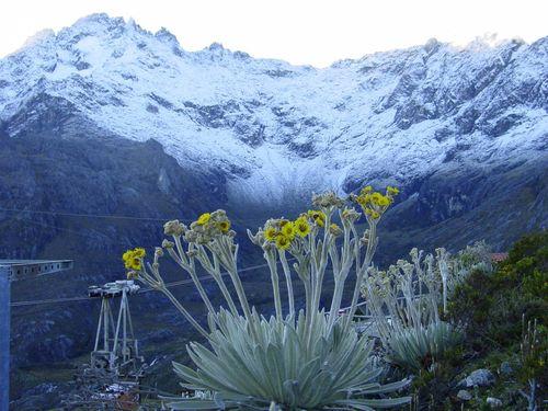 Pico Bolívar - Mérida - Venezuela